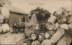 Bringing in the Sheaves - Loading Giant Vegetables Postcard
