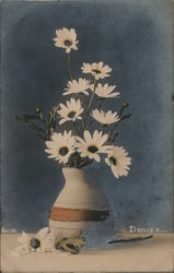 Daisies. Hand Colored Photo Postcard