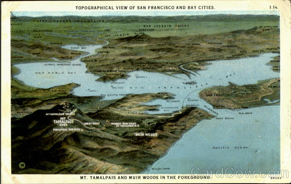 Topographical View Of San Francisco And Bay Cities California