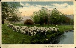 Near Rainelle