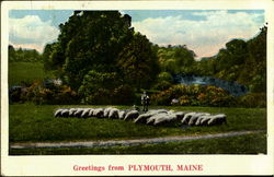 Greetings From Plymouth