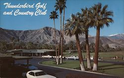 Thunderbird Golf and Country Club, palm trees, golfers, club house, cars Postcard