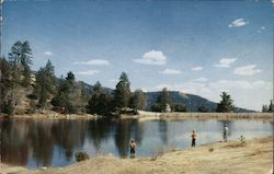 Foster Lake Postcard