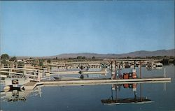 Reflections Colorado River Marina Postcard
