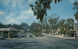 Beautiful village nestled among the hills and groves in San Diego County Postcard