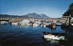 Boat Harbor Postcard