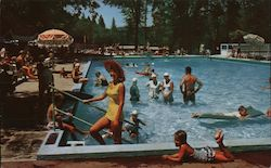 Forest Lake Resort Postcard