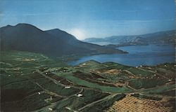 Mount Konocti and Harbor, Riviera Country Club Golf Course Postcard