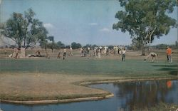 Lakewood Golf and Country Club Postcard