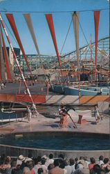 The Sea Circus Pacific Ocean Park Postcard
