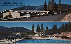 Shasta Royal Inn Postcard