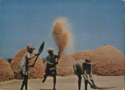 WINNOWING WHEAT ON THE HIGH PLATEAU Postcard