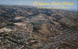 Aerial View of California State College, Alameda County Postcard