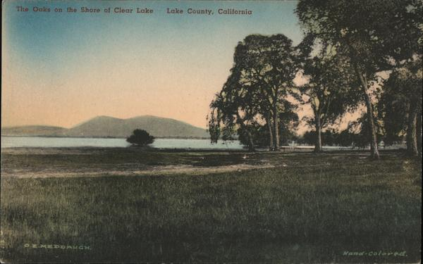 The Oaks on the Shore of Clear Lake Clearlake California