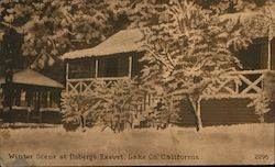 Winter Scene at Hoberg's Resort Postcard