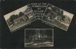 Some of the Attractions at Seigler Springs, Lake Co, Cal. Arsenic Spring and Bath, The Iron Baths, Camping Grounds Postcard