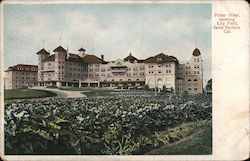 Potter Hotel, showing Lily Field Postcard