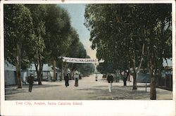 Tent City, Avalon Postcard