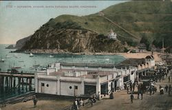 Aquarium, Avalon harbor, boats, ships Postcard