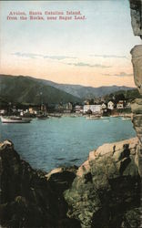 View from the Rocks near Sugar Loaf of Avalon Postcard