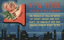 New York State's Flower, Rose Postcard