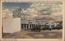 White's City Business Center at Entrance to Carlsbad Cavern National Park Postcard