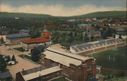 University of Montana from Mount Sentinel Postcard