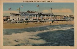 Natatorium and Beach Postcard