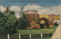 The World Famous Stump House Postcard