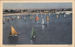 Coronado's colorful rainboat fleet sailboats Postcard