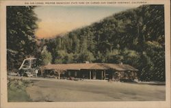 Big Sur Lodge, Pfeiffer redwoods State Park on Carmel-San Simeon Highway Postcard
