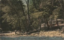 Cabin and river, Ripplewood Resort Postcard