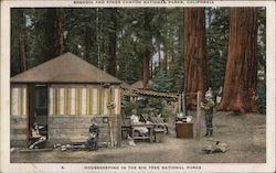 Housekeeping in the Big Tree National Parks - Sequoia and Kings Canyon Postcard