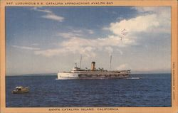 SS Catalina approaching Avalon Bay Postcard