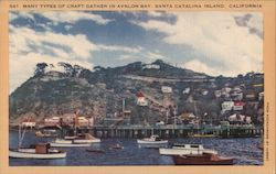 Avalon Bay, pier, boats Postcard