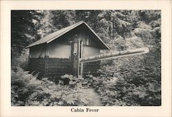Alaskan-Sized Thermometers Diagnose Cabin Fever Postcard