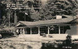 Big Sur Lodge on Carmel San Simeon Highway Postcard