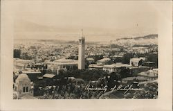 View of University of California Postcard