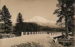 Mt. Shasta from Pacific Highway Postcard