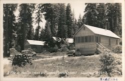 A Few of the Cottages at Plumas Pines Resort Postcard