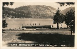 Lake Strawberry at Pine Crest Postcard
