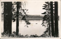 West Side of Lake Postcard