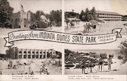 Greetings from Indiana Dunes State Park Postcard