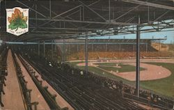 Land of the Maple. Canada. Baseball stadium Postcard