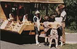 Ft. Wilderness Store on wheels - Walt Disney World Postcard