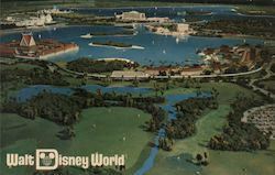 View of Disney World Postcard