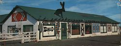 Jack Rabbit Trading Post Large Format Postcard