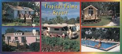 Tropical Palms Resort Vacation Cottages and RV-Sites Large Format Postcard
