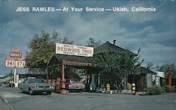 World's Largest Redwood Tree Service Station Postcard