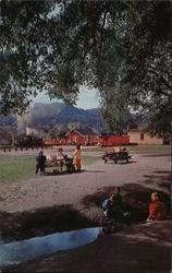 Roaring Camp & Big Trees Narrow-Gauge Railroad Postcard